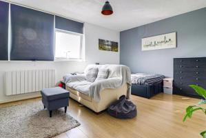 Living Area/Bedroom Area